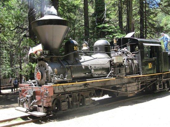 Yosemite Mountain Sugar Pine Railroad: Shay #10 Steam Engine