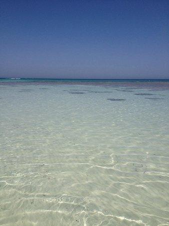 Seabel Rym Beach : Mare fronte spiaggia