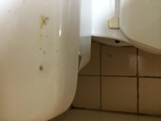 Super 8 Meridian: Unclean bathroom. Ashes