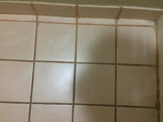 Super 8 Meridian : Hair all over floor (not mine)