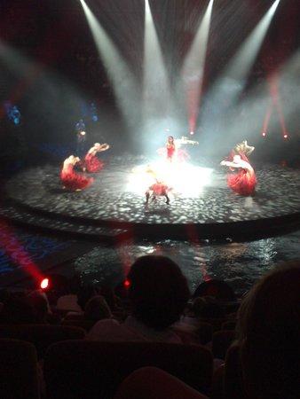 Le Reve - The Dream : Show Le Reve- The Dream