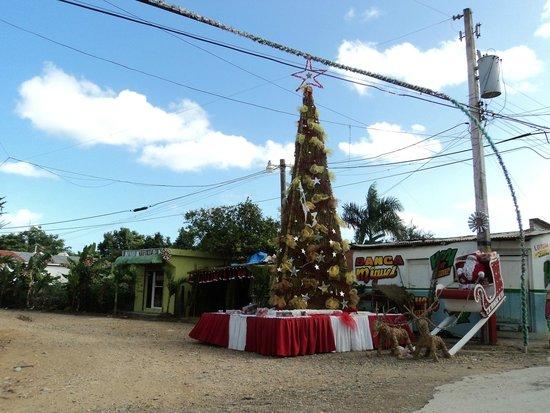 Sirenis Punta Cana Resort Casino & Aquagames : noel  en republique dominicaine