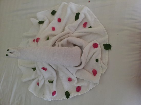 Sharm Plaza Hotel : wkd towel decor from our cleaner