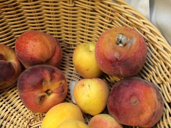 Holiday Polynesia: la fruta