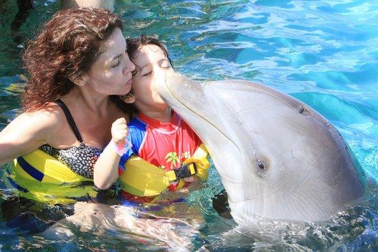 Dolphin Island : Mi hijito dando un besito al delfin