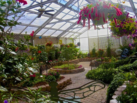 The Original Mackinac Island Butterfly House & Insect World: Enjoy our Butterfly Bench next to the Waterfall...