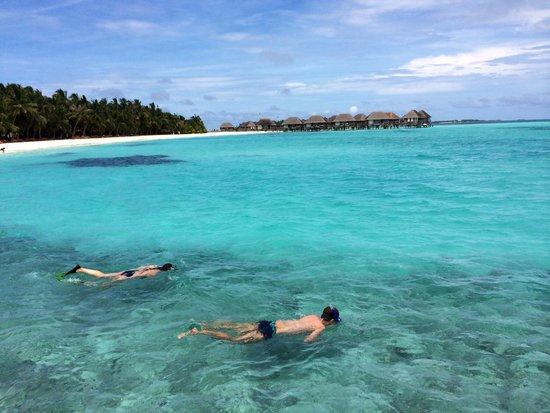 Club Med Kani : Snorkeling