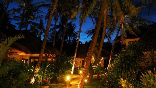 Palm Garden Amed Beach & Spa Resort : Palm Garden Amed by night
