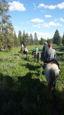 Timbers Condominiums at Island Park: Horse trail rides available