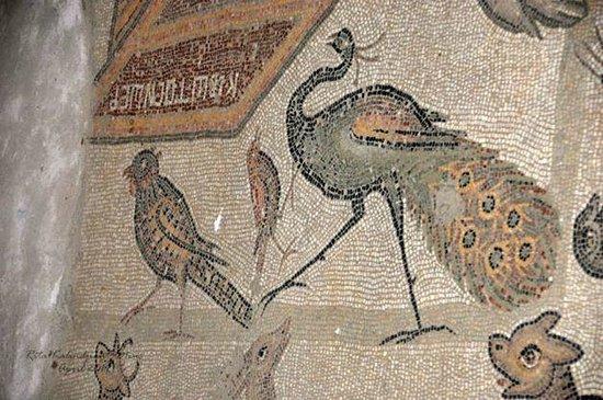 Misis Mosaic Museum
