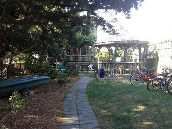 Pam's Pelican Bed & Breakfast : Bikes, kayaks, and gazebo for guest use