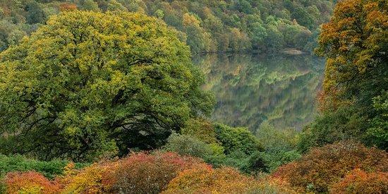 Glengarry Castle Hotel: Blick aus dem Zimmer auf das Loch Oich