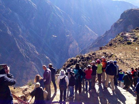 Condor's Cross: Voando sobre o Canyon