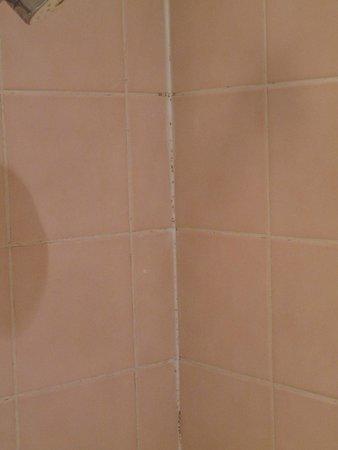 Le Clos Deauville Saint Gatien : joint de la salle de bain un peu moisi et odeur forte de renfermé