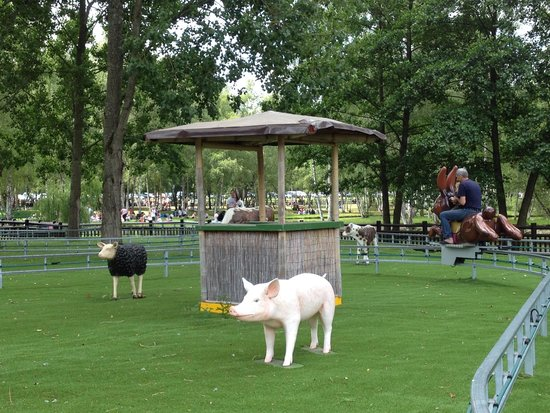 Parc Saint Paul : balade en lapins