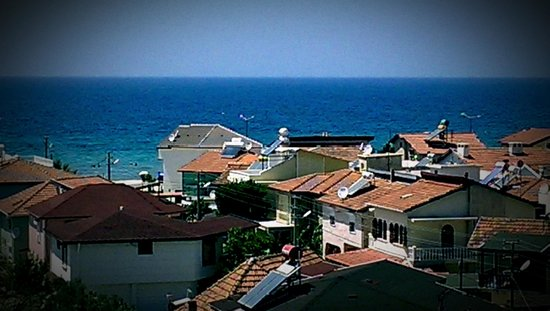 Palm Wings Beach Resort: вид из окна, номер1312