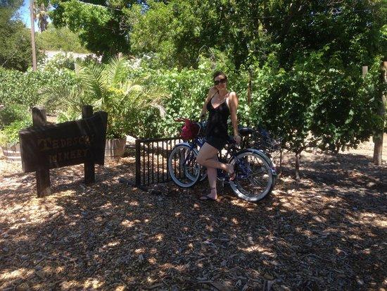 Cottage Grove Inn: Free bike :)