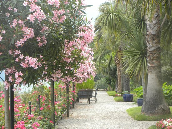 Isola Madre: viale fiorito