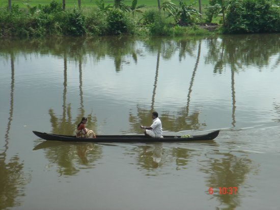 The great expanse of the Vembanad Lake along with trees and a country boat plying along.