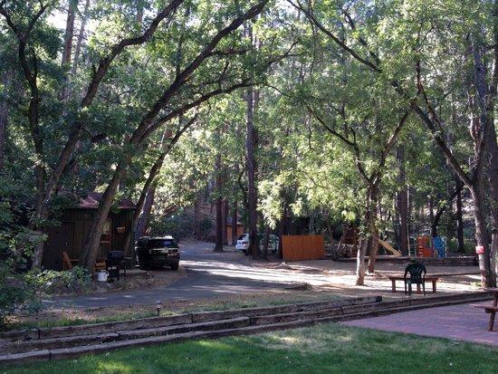 The Butterfly Garden Inn: The grounds