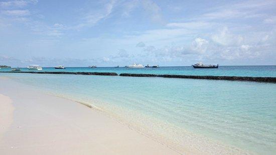 Kuramathi Island Resort : Beach near Infinity Pool