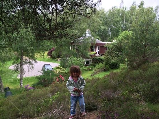 Spey Lodge: Exploring the forest