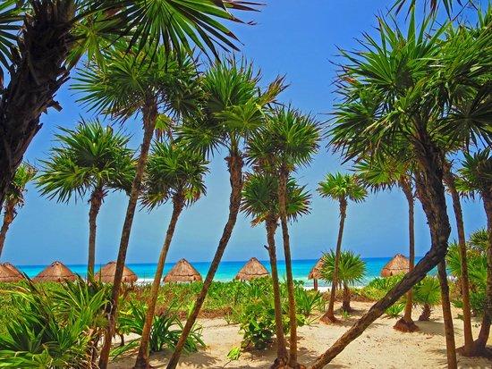 Valentin Imperial Riviera Maya: View of beach from Mar y tiera area