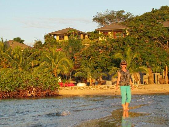 Volivoli Beach Resort Fiji: Studio vales above the beach area