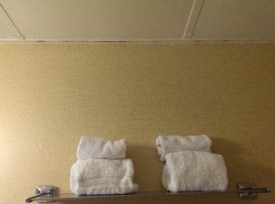 Clarion Inn Conference Center : bathroom ceiling