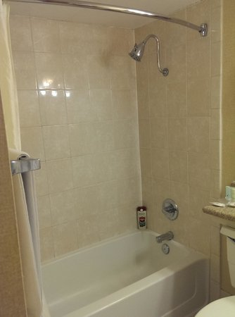Clarion Inn Conference Center: Tub