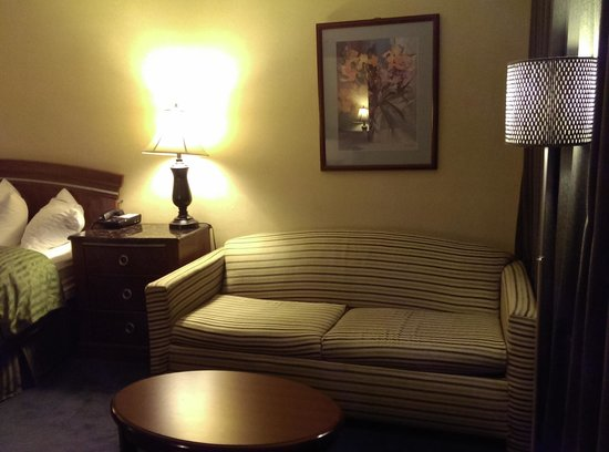 Clarion Hotel Modesto: sofa pull out bed