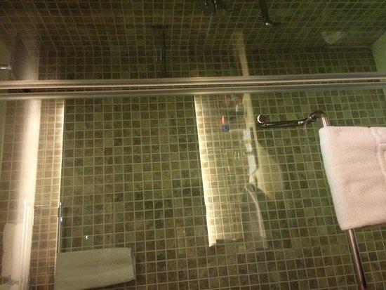 Jameson Inn Shiraz: WC 1