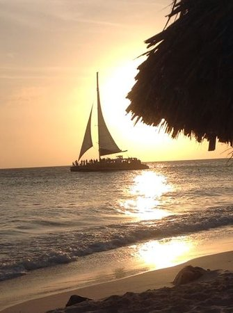 Casa Del Mar Beach Resort: There isn't any place nicer, then Aruba!
