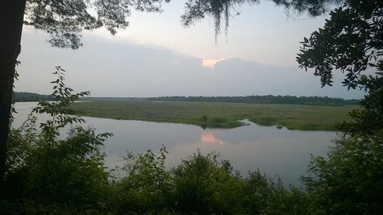 Inn at Middleton Place: View of the Ashley River from the chairs by the lodge