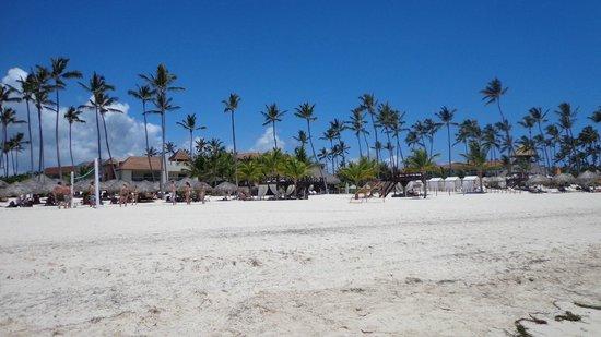 Secrets Royal Beach Punta Cana: Our Beach
