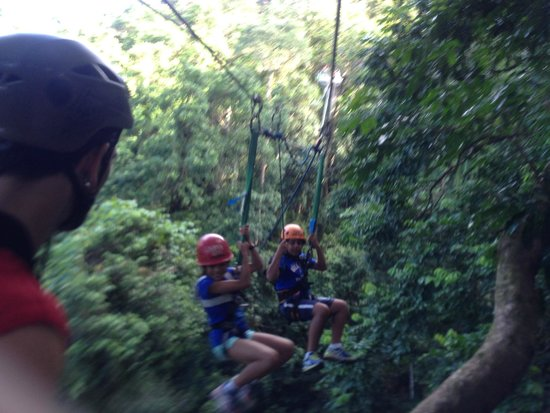 Jungle Surfing Canopy Tours: Jungle Surfing