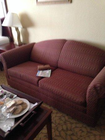 Plaza Resort & Spa: Sleeper sofa too