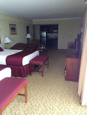 Plaza Resort & Spa: Large room