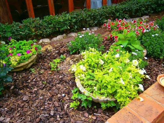 Hotel Garbi: jardines