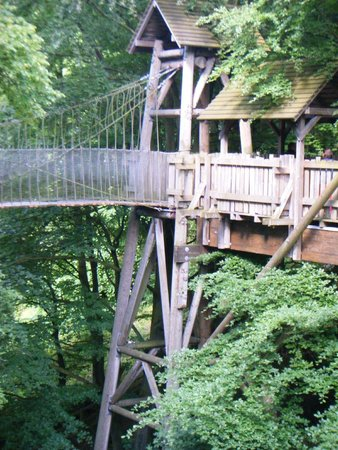 Rope Bridges Picture Of The Treehouse Restaurant At The