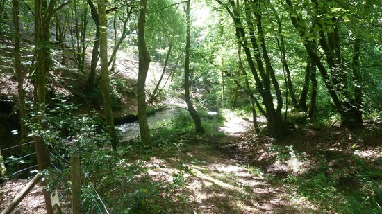 The Mill at Glynhir: Stream running along the rear of the property