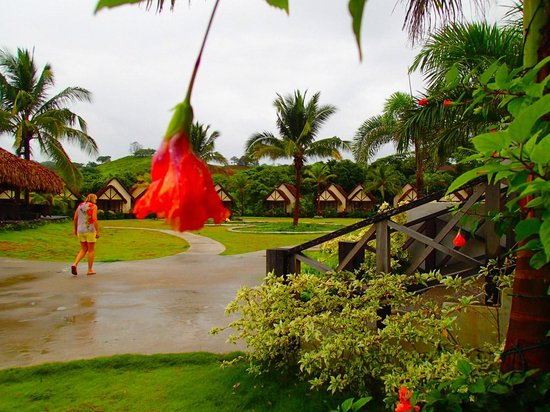 Playa Venao Hotel Resort: Beautiful grounds