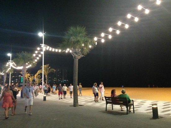 Hotel Ambassador Playa: Seafront
