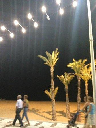 Hotel Ambassador Playa I & II: Seafront