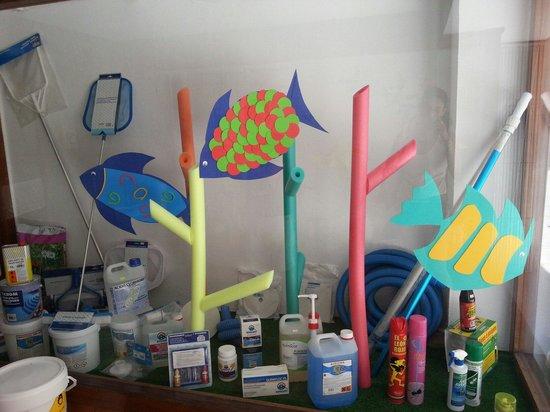 Productos para piscinas accesorios y todo en insecticidas for Productos para piscinas