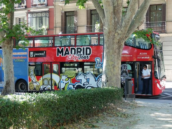 Madrid City Tour: Clean and Tidy buses