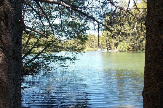 "Donner Lake: Near the ""beginning"""