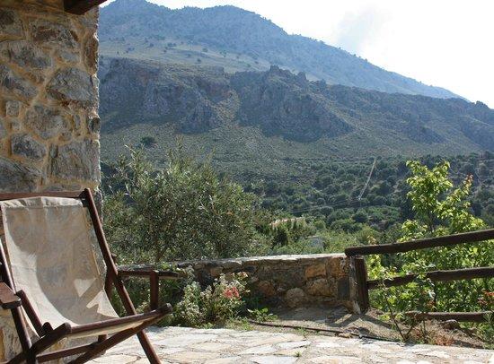 Eleonas: Cabin 1 patio view