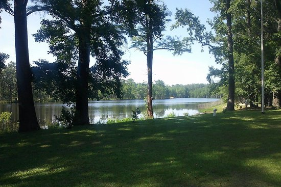 Carvers Creek State Park : View of the Lake