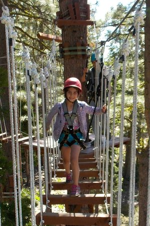 Tahoe Treetop Adventure Park : ropes course